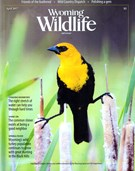 Wyoming Wildlife Magazine 4/1/2017