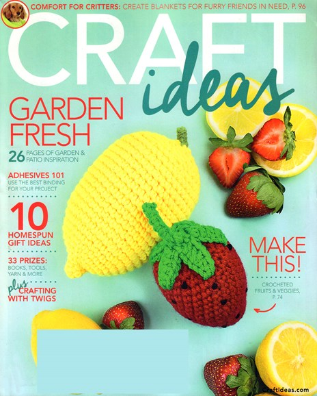 Craft Ideas Cover - 4/1/2017