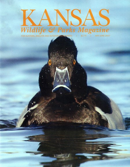 Kansas Wildlife & Parks Cover - 5/1/2017