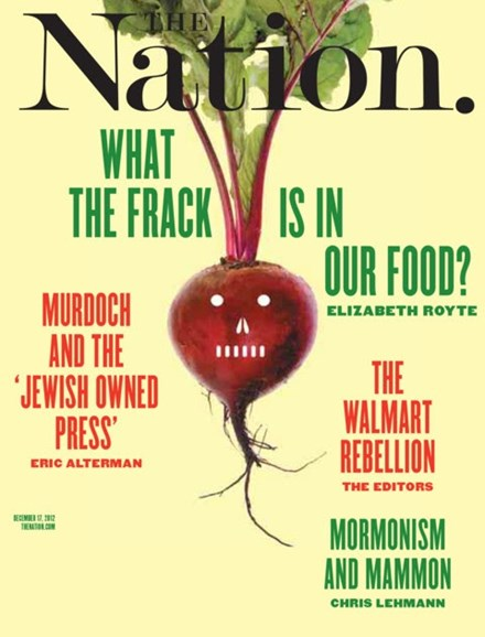 The Nation Cover - 12/17/2012