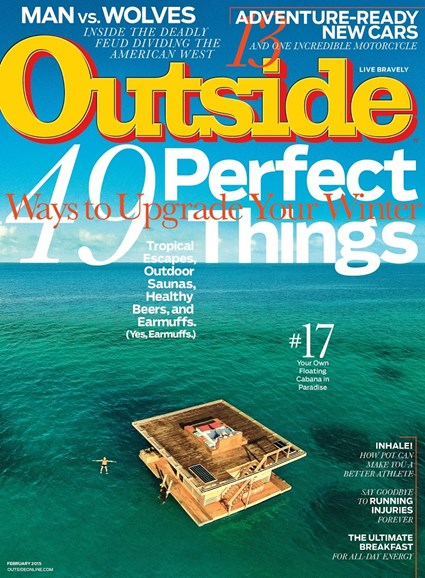 Outside Cover - 2/1/2015