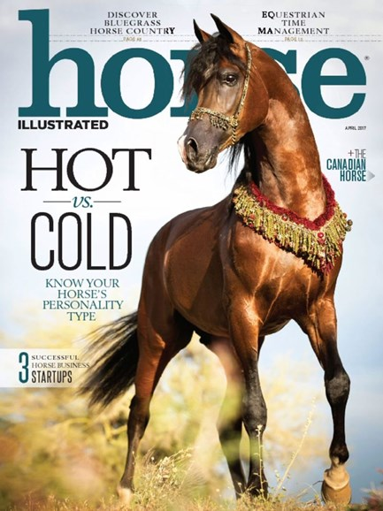 Horse Illustrated Cover - 4/1/2017