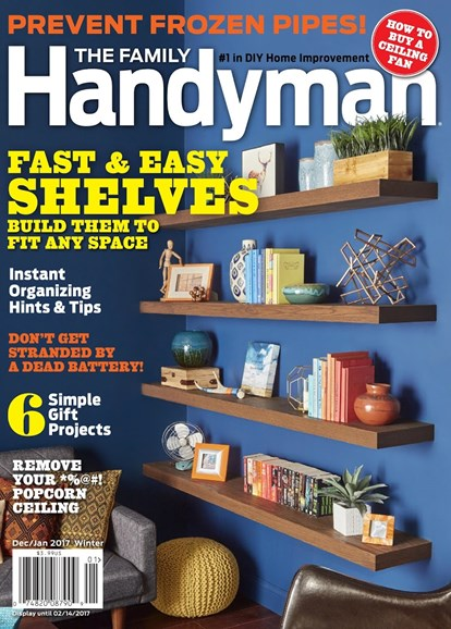 The Family Handyman Cover - 12/1/2016