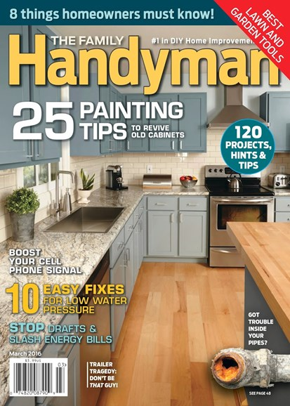 The Family Handyman Cover - 3/1/2016