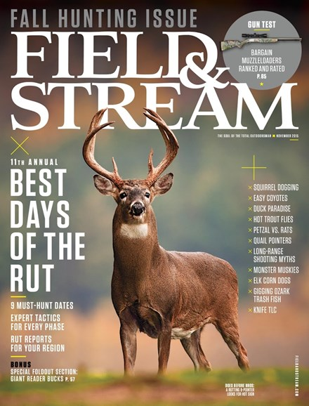 Field & Stream Cover - 11/1/2015