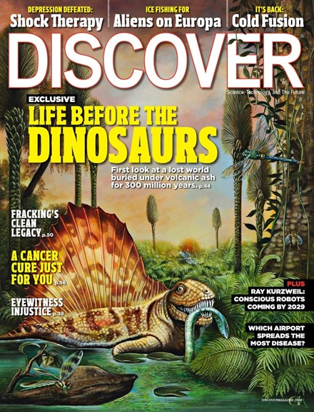 Discover Cover - 11/1/2012