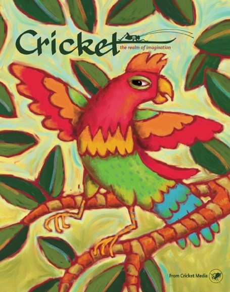 Cricket Cover - 5/1/2017