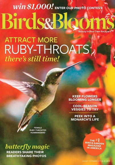 Birds & Blooms Cover - 8/1/2017