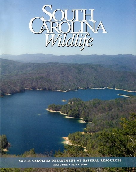 South Carolina Wildlife Cover - 5/1/2017