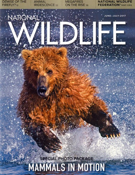 National Wildlife Cover - 6/1/2017