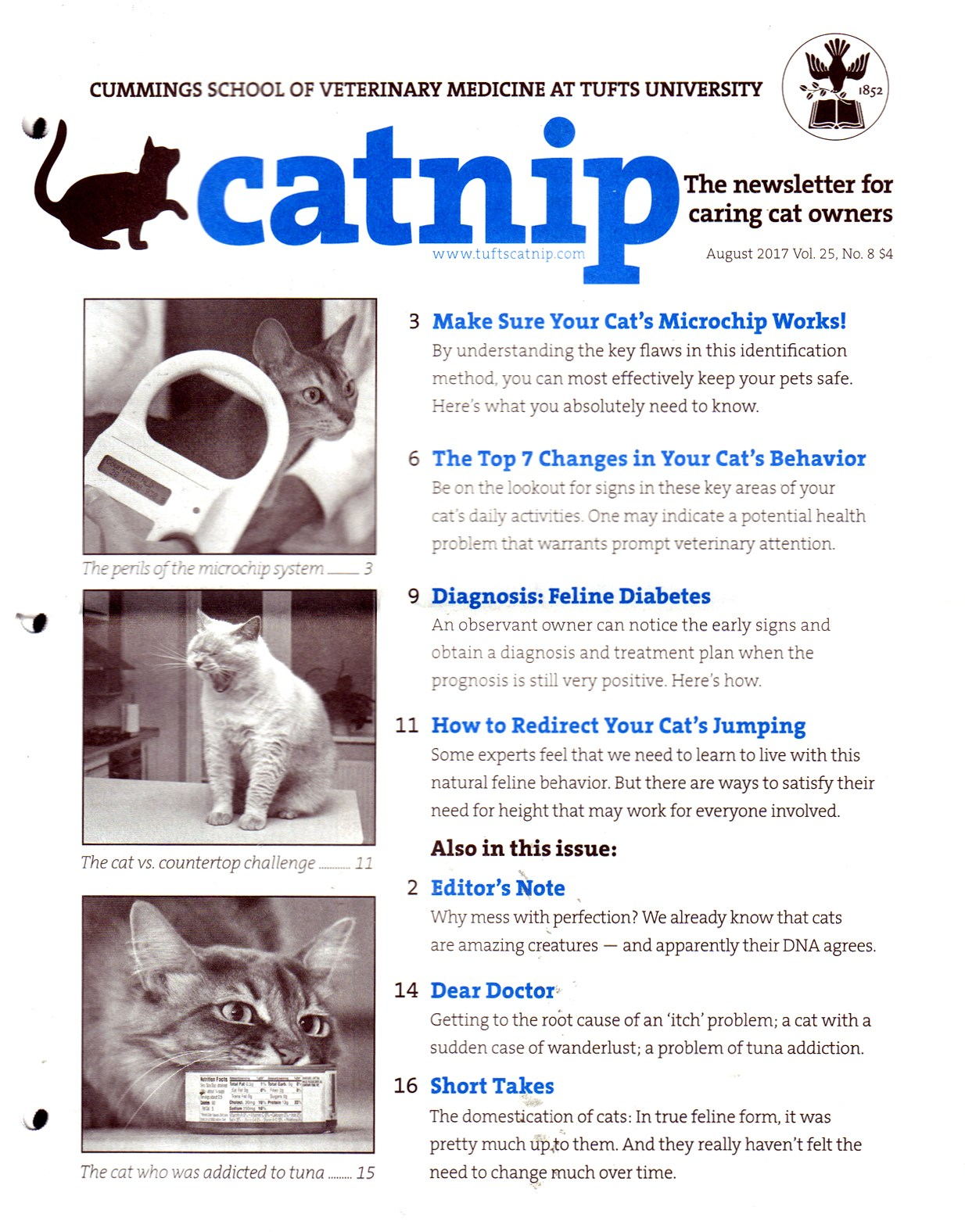 Best Price for Catnip Magazine Subscription
