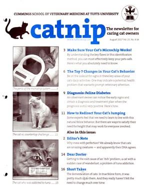 Catnip Newsletter | 8/2017 Cover
