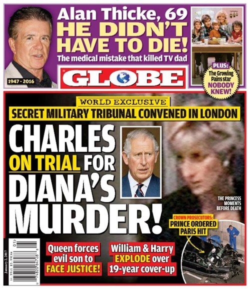Globe Cover - 1/2/2017