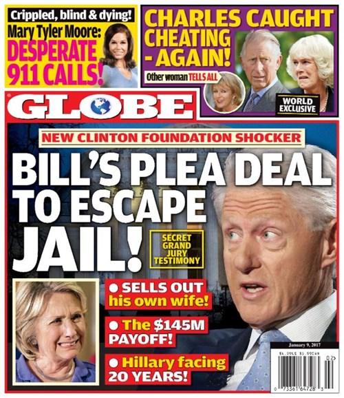 Globe Cover - 1/9/2017