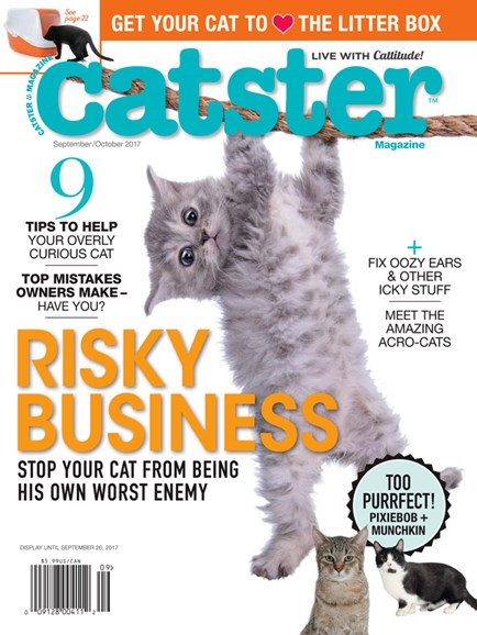 Catster Cover - 9/1/2017