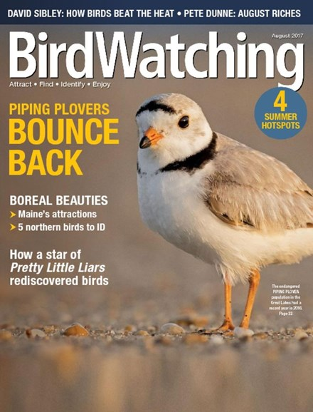 Bird Watching Cover - 8/1/2017