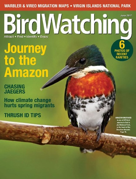 Bird Watching Cover - 6/1/2017