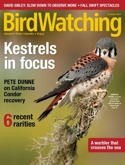 Bird Watching Cover - 10/1/2017