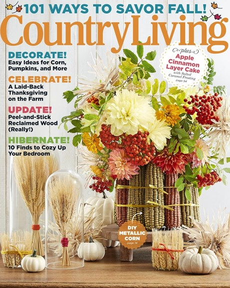 Country Living Cover - 11/1/2017