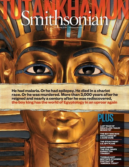 Smithsonian Cover - 12/1/2014