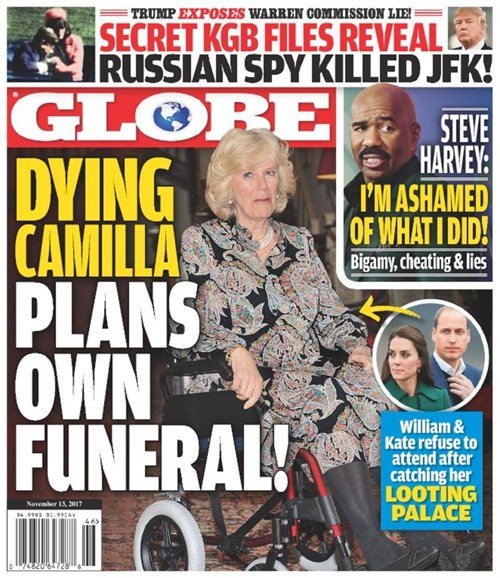 Globe Cover - 11/13/2017
