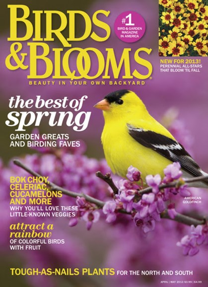 Birds & Blooms Cover - 4/1/2013