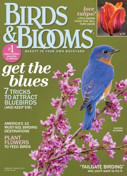 Birds & Blooms Cover - 2/1/2013
