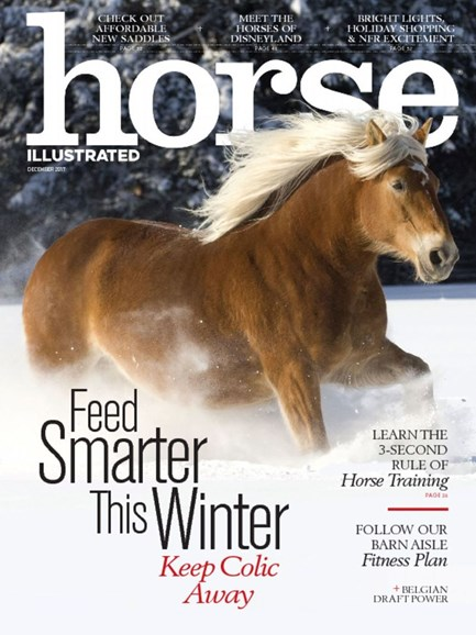 Horse Illustrated Cover - 12/1/2017