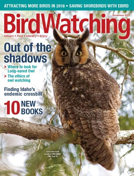 Bird Watching Cover - 12/1/2017