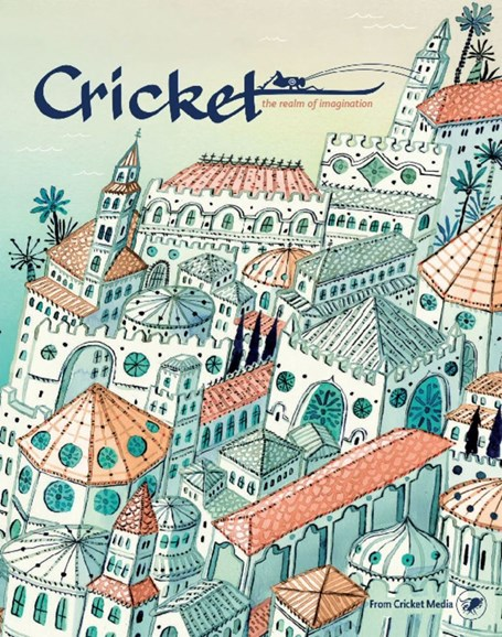 Cricket Cover - 11/1/2017