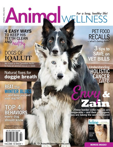 Animal Wellness Cover - 2/1/2017