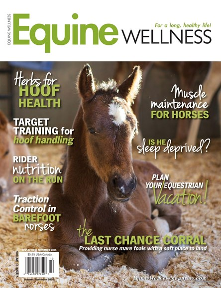 Equine Wellness Cover - 10/1/2016