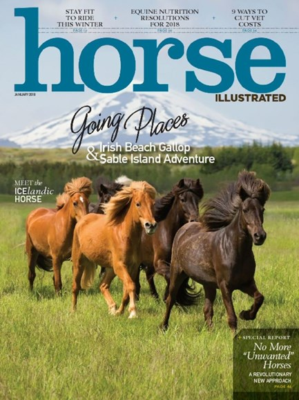Horse Illustrated Cover - 1/1/2018