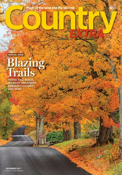 Country Extra Cover - 11/1/2017