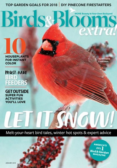 Birds & Blooms Extra Cover - 1/1/2018