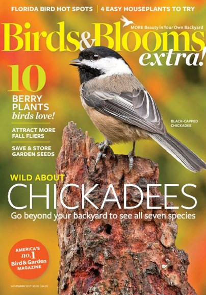 Birds & Blooms Extra Cover - 11/1/2017