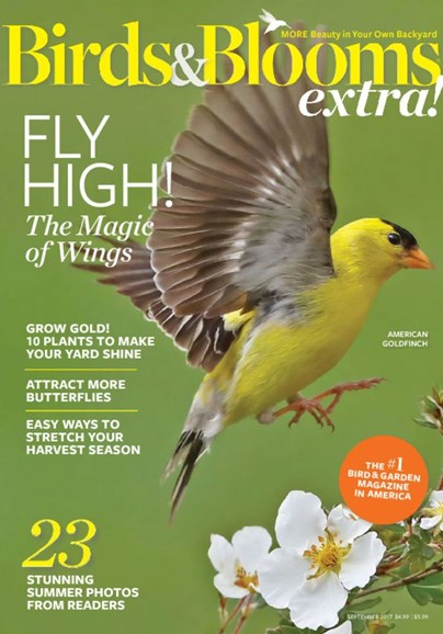 Birds & Blooms Extra Cover - 9/1/2017