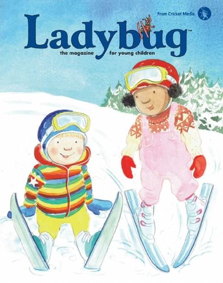 Ladybug Cover - 1/1/2018