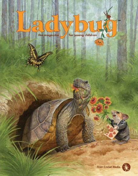 Ladybug Cover - 2/1/2018
