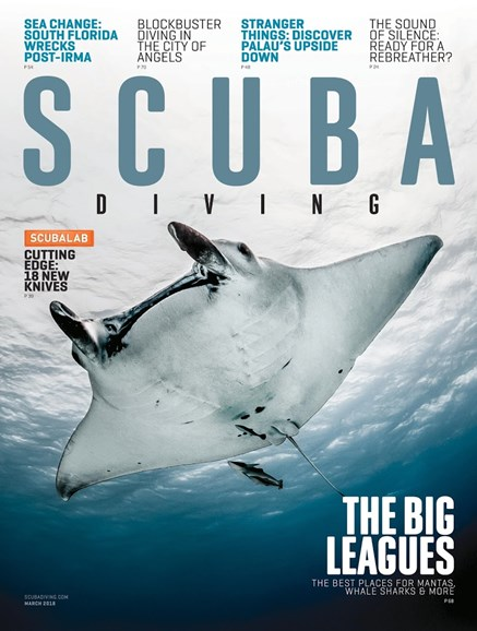 Scuba Diving Cover - 3/1/2018