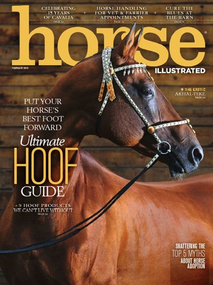 Horse Illustrated Cover - 2/1/2018