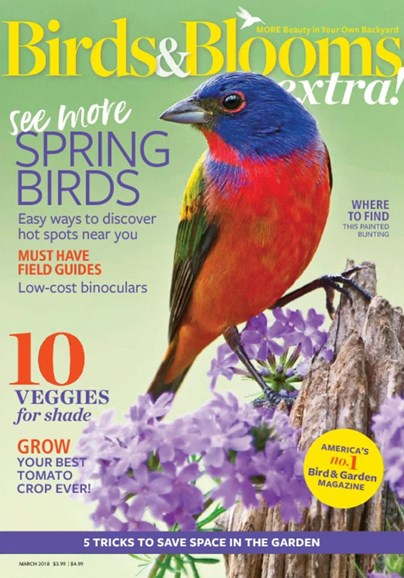 Birds & Blooms Extra Cover - 3/1/2018