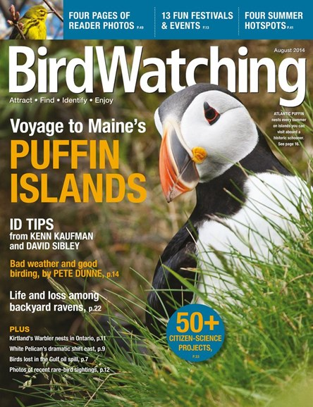 Bird Watching Cover - 8/1/2014