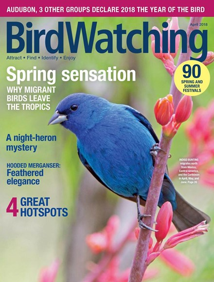 Bird Watching Cover - 4/1/2018
