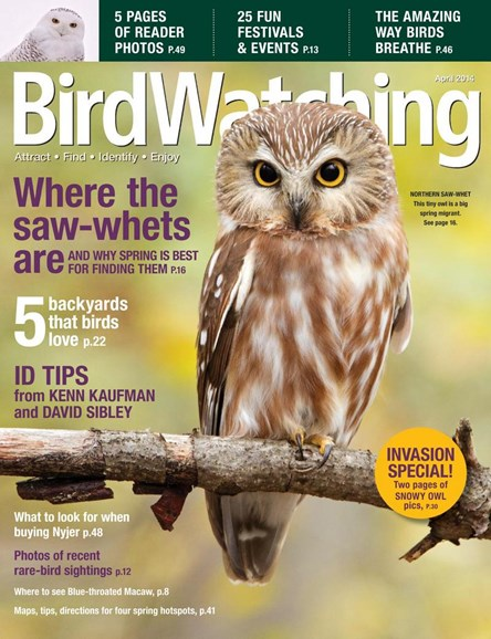 Bird Watching Cover - 4/1/2014