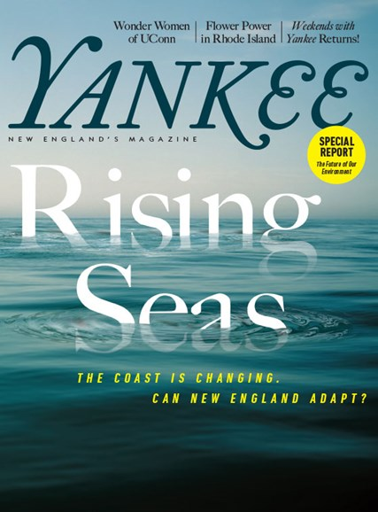 Yankee Cover - 3/1/2018