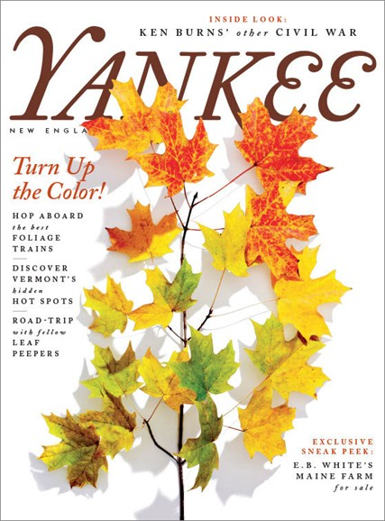 Yankee Cover - 9/1/2017