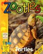 Zootles Magazine | 12/2017 Cover