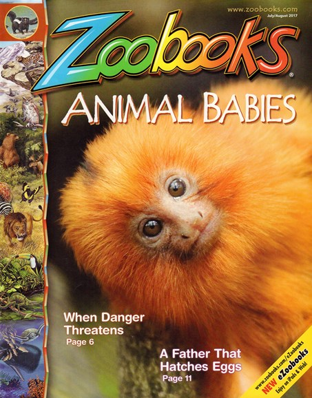Zoobooks Cover - 7/1/2017