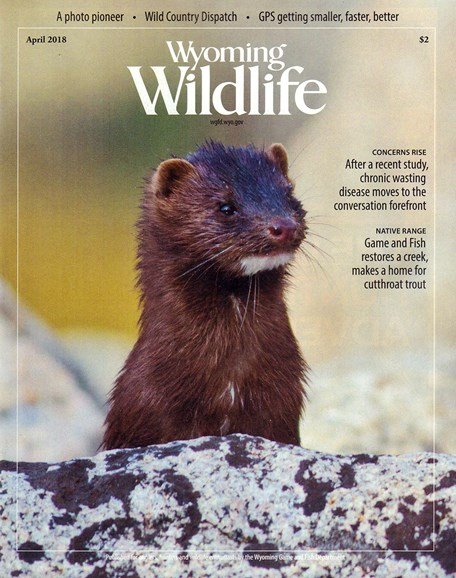 Wyoming Wildlife Cover - 4/1/2018